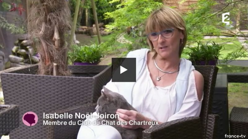 France 2 - Reportage -  Isabelle NOEL-JOIRON